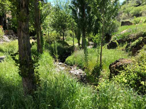 Zonas verdes Patones de Arriba